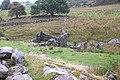 Brwynog Uchaf Ruin near Llyn Cowlyd Reservoir - geograph.org.uk - 222112.jpg