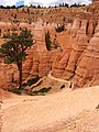 Bryce Canyon from scenic viewpoints (14680296465).jpg