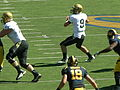 Buffaloes on offense at Colorado at Cal 2010-09-11 29.JPG