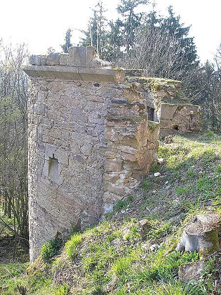 http://upload.wikimedia.org/wikipedia/commons/thumb/c/c7/Burg_Raueneck_2.jpg/450px-Burg_Raueneck_2.jpg