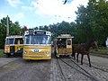 Buses and horse tram on Sporvejsmuseet.jpg