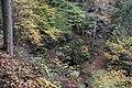 Buttermilk Falls - panoramio (13).jpg