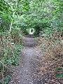 Byway near Shingle Barn Lane - geograph.org.uk - 199525.jpg