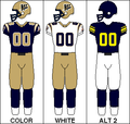 CFL Jersey WPG 2008.png