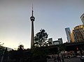 CN Tower -throughglass (35678681213).jpg