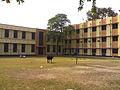 Serampore College