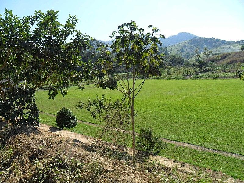 File:Campo Piedade de Cima parcial III. - panoramio.jpg