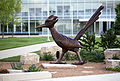 Campus Fall 2013 66 (9665136310).jpg