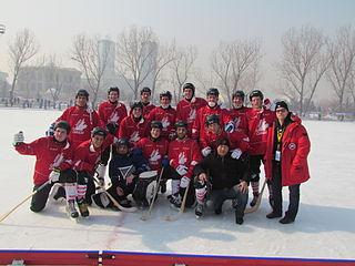 Canada national bandy team