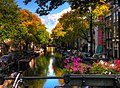 Canal In Amsterdam (56679400).jpeg