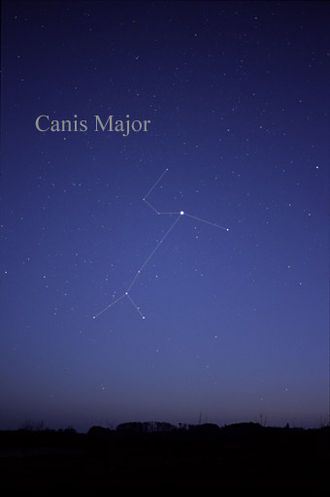 Canis Major - The stars of Canis Major as they can be seen by the naked eye; lines have been added for clarity.