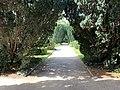 Carré Lamarck Jardin Plantes - Paris V (FR75) - 2021-07-30 - 3.jpg