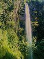 Cascada en Zapotitlán - panoramio.jpg