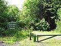 Cefngarw Wood - geograph.org.uk - 1344807.jpg