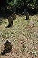 Cer-Voničko groblje (Krivaja) 18. 08. 2019 262.jpg