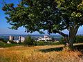 Château Gaillard vu de la colline.jpg