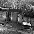 Chałupa Justyny Grzegory (Łowicka Izba Regionalna) - Złaków Borowy - 000523n.jpg