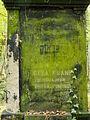 Chenstochov ------- Jewish Cemetery of Czestochowa ------- 147.JPG