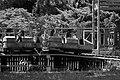 Children Roller Coaster (23874520546).jpg