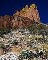 Chiricahua VIII - panoramio.jpg