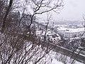 Chotkovy sady - panoramio (5).jpg