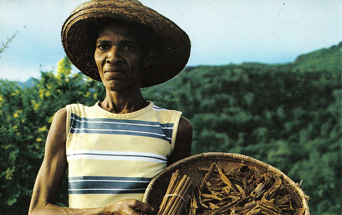 Agriculture In Seychelles Wikipedia