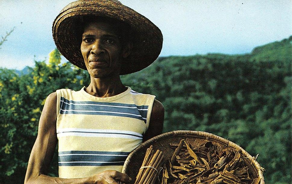 Cinnamon quill maker Seychelles
