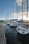 Circolo Nautico NIC Porto di Catania Sicilia Italy Italia - Creative Commons by gnuckx (5383716708).jpg
