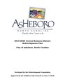 City of Asheboro Central Business District Redevelopment Plan 2018-2023.pdf