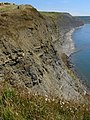 Cliffs above Rope Lake Hole - geograph.org.uk - 900722.jpg