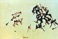 Clostridium tetani 01.png
