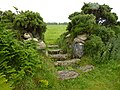Coffen path stile. - panoramio (1).jpg
