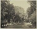 Collectie NMvWereldculturen, RV-A42-1-14, Foto, 'Gang Scott in Weltevreden te Batavia', fotograaf Woodbury & Page, ca. 1875.jpg
