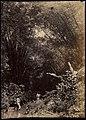 Collectie Nationaal Museum van Wereldculturen TM-60062335 Twee mannen in een stroompje, op de achtergrond hoge bamboebomen Trinidad fotograaf niet bekend.jpg