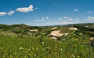 Roero - Image: Colline del Roero (Piemonte, Italia)