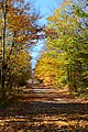 Colton, NY, USA - panoramio (2).jpg