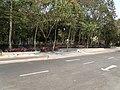 Common bicycles in Infosys Mysore (2).JPG