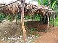 Composting site (6346822637).jpg