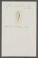 Conus anabathrum - - Print - Iconographia Zoologica - Special Collections University of Amsterdam - UBAINV0274 086 07 0036.tif