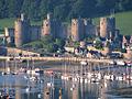 Conwy Castle DSC02168c.jpg