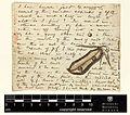 Correspondence - Mellichamp (Joseph) and Engelmann (George) (Aug 10, 1872 (2) verso) BHL44339398.jpg