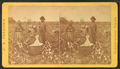 Cotton field, by J. A. Palmer 6.png