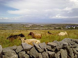 Inishmaan island on the west coast of Ireland