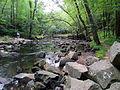Crabtree Creek Mill Trail Umstead SP 3322 (5893852779) (2).jpg