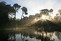Crepuscular rays at Lloyd Lake.jpg
