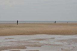 Crosby Beach (5482)