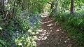 Cumber's Lane heading south - geograph.org.uk - 1292507.jpg