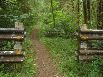 Cummins Creek Wilderness - Image: Cummins Creek Wilderness
