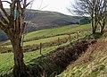 Cwm Doethie Fawr in March, Ceredigion - geograph.org.uk - 1229953.jpg