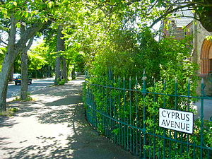 Astral Weeks - Cyprus Avenue – the street in Belfast that inspired the song.